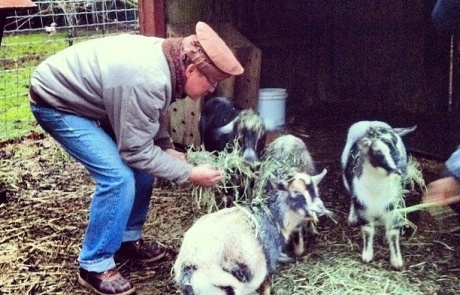 Mitch and the Stargrove goats