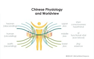Chinese Physiology and Worldview