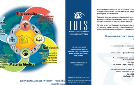 Software: Integrative BodyMind Information System (IBIS)