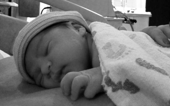 Henry Luis - Stargrove grandbaby