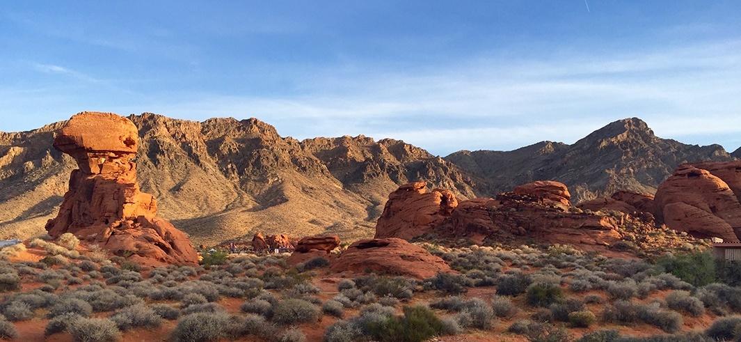 desert, by Lori Stargrove